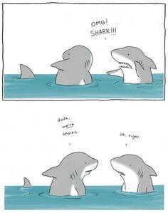 Sharks Comic
