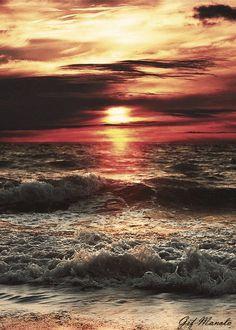 Gifs la mer - Désigns & déco blog