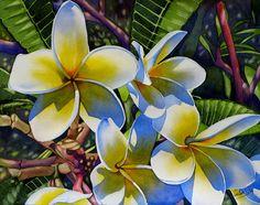 PLUMERIA Rainbow Yellow Frangipani Hawaii Tropical flower 1st place Award winner painting Sandrine Curtiss ORIGINAL watercolor Art 11x14 on Etsy, $425.00