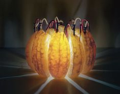 LED located inside sliced wedges of an orange. The cool part is that the LED is powered by the orange itself.