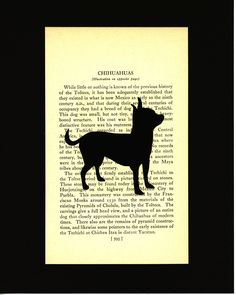 Chihuahua Silhouette Handcut Mounted on Vintage Dog Book Page by elizaBcrafts on Etsy