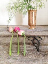AWESOME!! Making Your Flowers Last Longer from Wild Folk Studio | Style Me Pretty blog