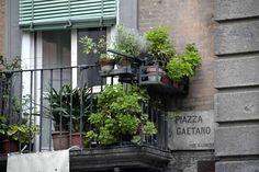 #Napoli @beamingtoyou