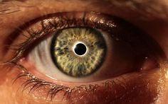 Le fonctionnement de l'œil est analogue a celui d'une camera ou d'un appareil photo. La lumière traverse d'abord la cornée qui s'occupe, avec le cristallin, de la mise au point de l'image. La...