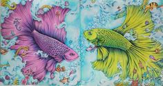 https://flic.kr/p/25ESUWH   Fishes Kerby Rosanes Animorphia   Kerby Rosanes Animorphia