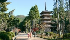 In the Shimo Daigo area of the Daigoji Temple stands a 38 meter tall, five storied pagoda that is Kyoto's oldest verified building. Built in 951, the pagoda is the only structure to survive the fires that have repeatedly destroyed Daigoji over the centuries