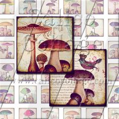 NEW Mushrooms  Instant Download Digital Collage by calicocollage, $4.15