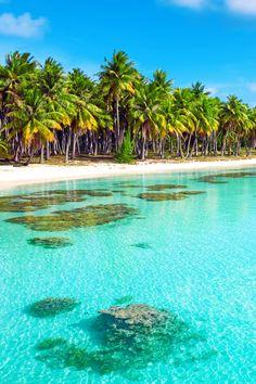 Beach Tropics Wallpaper. #paraside #beach #iphone #wallpaper Heaven Wallpaper, Beach Wallpaper, Wallpaper Ideas, Sea And Ocean, Ocean Beach, Beach Properties, Beach Scenes, Heaven On Earth, Maldives