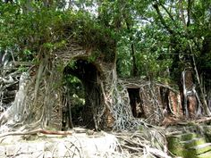 Ross Island, India Located in South Andaman, India, this island was once a Britisch administrative center for the Indian Penal Settlement. However, after it was abandoned it became overgrown with wild ficus and now it has a stunning Jungle Book vibe. Ross Island, Andaman Islands, Abandoned Cities, Cheap Wedding Venues, Free Travel, Trip Planning, Most Beautiful, Beautiful Places, Places To Visit