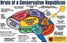 Conservative Republican brain
