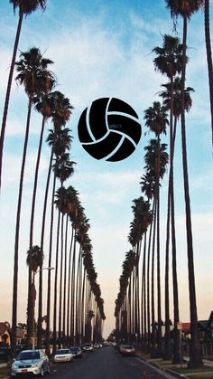 Volleyball background wallpaper 25