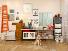 Get Inspired at This Innovative Space - Cooper, my rescue dog, smack in the middle of my work space as usual