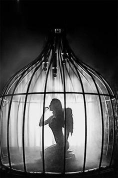 "© David Hickey. ""Caged bird Janelle"""
