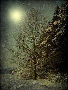 """Winternacht"" / Bild-Nr. 173388"