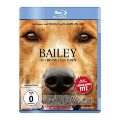 bailey ein freund fГјrs leben online stream