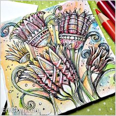 Stylized Lotus flowers in 3D with watercolor coloring • enioken.com