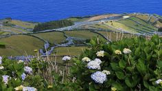 Corvo Island, UNESCO Biosphere Reserve and the smallest island of the Azores.