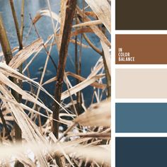 Beautiful deep colors. Paints, donated by the nature - earth, water, sky. Shades of brown and gray-blue in perfect harmony with light beige. This range - the perfect solution for creating an autumn wardrobe in sporty or casual style. The colors, which are suitable for both female and male image.