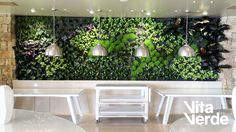 All done! Sani Club have freshened up their interior with this relaxing vertical garden!   Technology of Jardines Verticales Paisajismo Urbano  #vitaverde_gr #saniclub #notyourordinaryspace #PaisajismoUrbano
