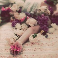 Flower Portrait Whimsical Photograph Soft Pink Flowers by ellemoss