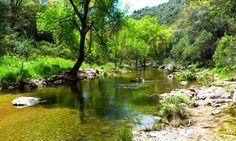 Establecimiento rural ubicado en un entorno privilegiado, en pleno Parque Natural Sierra de Hornachuelos