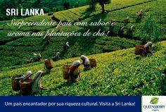"Descubra o melhor da ""pérola do oceano índico"". Um país encantador por sua riqueza cultural. Visite a Sri Lanka!  #SriLanka #Colombo #Pinnawala #Kurunegala #Dambulla #Kandalama #Sigiriya #Polonnaruwa #Matale #Kandy #Peradeniya #Plantacaodecha #NuwaraEliya #Kandapola #Yala #Tissamaharama #Galle #Kosgoda #QueensberryViagens"