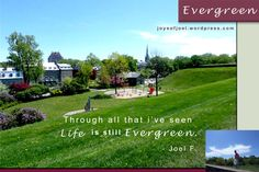 Evergreen, joys of joel poems, poetry , nature photography, poem about faith and life, inspirational quotes Evergreen, Grass, Nature Photography, Poems, Bloom, Inspirational Quotes, Faith, Joy, Random