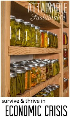 Survival during economic crisis. Prepping for recession. Homestead ~ garden ~ food preservation ~