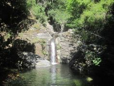 Corsica - Cascades et Canyons - Arega - Commune : Brando, Lavasina.Massif : Cap Corse.Ruisseau d' Arega.(Haute Corse)