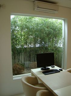 Jardim de inverno pequeno entre o muro e a janela.  Fotografia: http://www.decorfacil.com