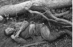 Красноармеец, погибший в Белоруссии 1941