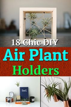 18 Chic DIY Air Plant Holders Check out 18 DIY Air Plant Holders that you can make by yourself to display air plants in your home more stylishly. Air Plant Display, Plant Decor, Home Design, Modern Design, Upcycled Crafts, Diy And Crafts, Summer Crafts, Diy Valentine's Pillows, Indoor Plants