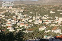 Turmusaya, a small village in Palestine