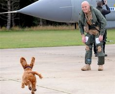What a happy pup! Jezebel welcomes home her owner Steve Morris, a flight lieutenant, after his seven-month deployment in Libya.