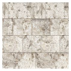 Komar Birch Wall Mural   8 740 Part 21