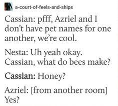 Cassian and Azriel #brotp