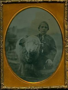 Ambrotype of boy and sheep, dated 1859