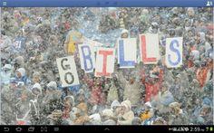 Buffalo Bills fans are the best!