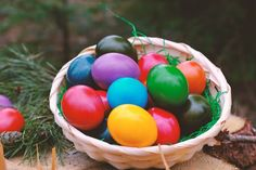 – Lee Farms in Tualitan has joined the adult Easter egg hunt craze. Egg Hunt, Easter Eggs, Fun Facts, Gadgets, Geek Stuff, Holiday, Laptops, Annie Lee, Paste