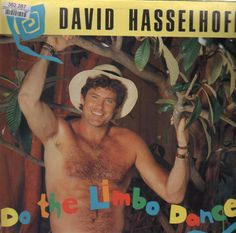 "David Hasselhoff - ""Do The Limbo Dance"" Somethings you just wanna hear because you know how bad it will be. Worst Album Covers, Cool Album Covers, Music Album Covers, Lp Cover, Vinyl Cover, Bad Album, Vinyl Cd, Best Albums, Weird And Wonderful"