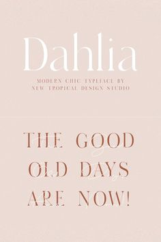 "Short quote ""the good old days are now"". Modern font bundle and logo design kit; fonts for designers; Web Design, Brand Design, Coreldraw, Cool Fonts, New Fonts, Banners, Modern Serif Fonts, Photoshop, Tropical Design"