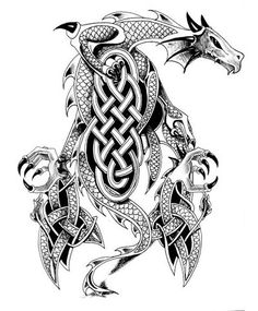 Celtic Dragon Tattoo Flash Drawing                              …