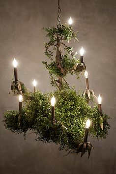 Diy branch chandelier complete with wiring instructions i figure i castlebeck chandelier anthropologie so pretty i want a foresty chandelier in my future dining room mozeypictures Gallery