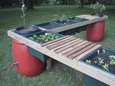 Patio Barrel Garden, especially useful for the elderly or disabled