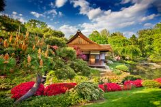The gorgeous Shofuso Japanese House and Garden in Philadelphia's Fairmount Park  (Photo by G. Widman for GPTMC) Japanese Gardens, Zen Gardens, Magical Gardens, Japanese Tea House, Philadelphia Pa, Fairmount Philadelphia, Philadelphia Restaurants, Japanese History, Japanese Culture