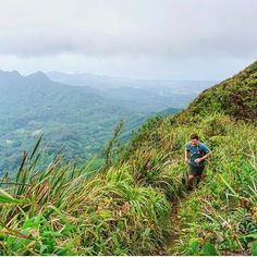 いいね!108件、コメント2件 ― FITS socksさん(@fitssocks)のInstagramアカウント: 「@sir_gravytrain crushing the Ka'au Crater Loop Trail #fitssocks」