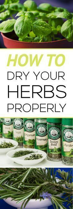 Easily learn how to harvest and dry your own herbs properly for the best flavor! More #gardeningdiy #herbsgardening