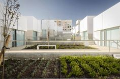 Image 7 of 25 from gallery of Social Complex in Alcabideche / Guedes Cruz Arquitectos. Photograph by Ricardo Oliveira Alves Landscape Architecture Model, Landscape Design, Minimal Architecture, Commercial Architecture, Contemporary Architecture, Eco Buildings, Portugal, Elderly Person, Water And Sanitation