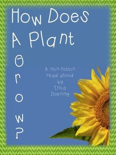 This non-fiction read aloud would be an excellent way to kick off your study of plants or to add to your classroom library!