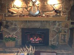 Heat-N-Glo Escape-35 direct vent fireplace insert sold and installed by Fine's Gas.